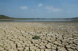 Le climat a provoqué le déplacement de trois fois plus de personnes que les conflits