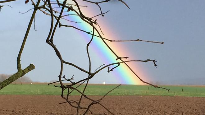 Halte aux idées reçues: voici pourquoi il vous arrive d'observer des arcs-en-ciel (photos)
