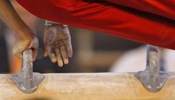 Coupe du monde de gym artistique - Maxime Gentges médaille d'argent au cheval d'arçons à Bakou