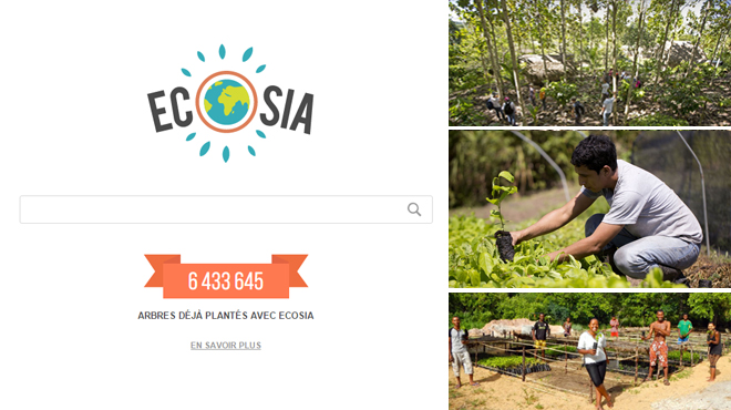 Ecosia, un moteur de recherche qui plante des arbres plutôt que de rapporter des milliards à une multinationale