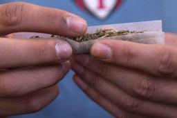 Le cannabis demeure la drogue la plus consommée en Belgique