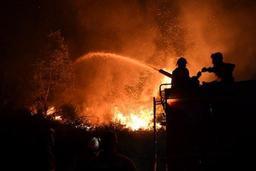 Les feux de forêt font à nouveau rage au Portugal