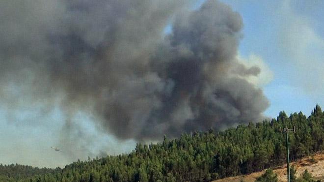 Incendies au Portugal: légère accalmie avant un week-end à haut risque