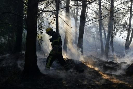 Incendies en Haute-Corse: la garde à vue d'un homme prolongée