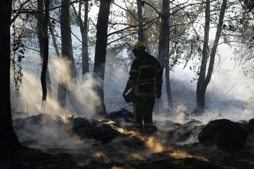 Haute-Corse: deux feux