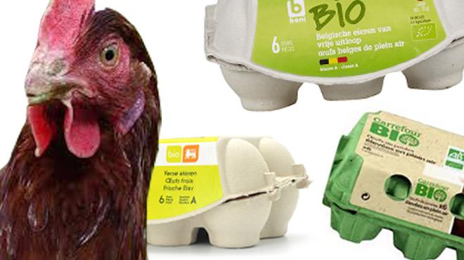 La crise Fipronil a-t-elle eu un impact sur les ventes d'oeufs bio dans nos supermarchés?