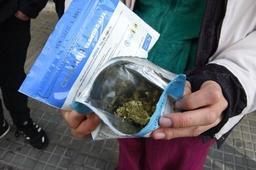 Le PS a déposé sa proposition de loi visant à réglementer le cannabis