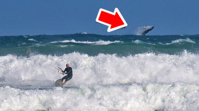 Photo SPECTACULAIRE: Cédric, originaire d'Yvoir, est en train de faire du kitesurf quand soudain...