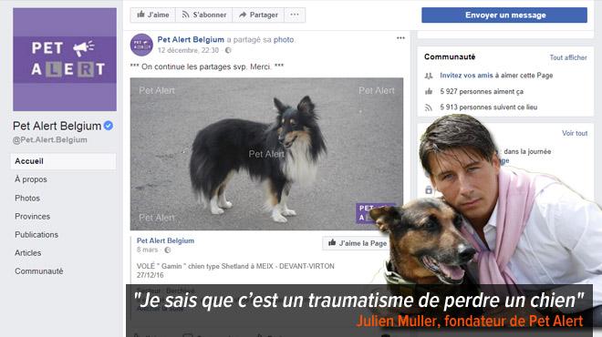 Marie veut rendre hommage au travail de fourmi des pages Facebook Pet Alert pour retrouver les animaux perdus: