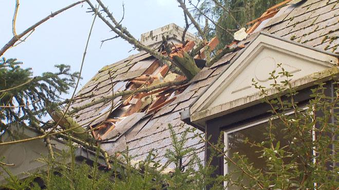 Image impressionnante à Tervuren: un arbre tombe sur une maison et défonce la toiture