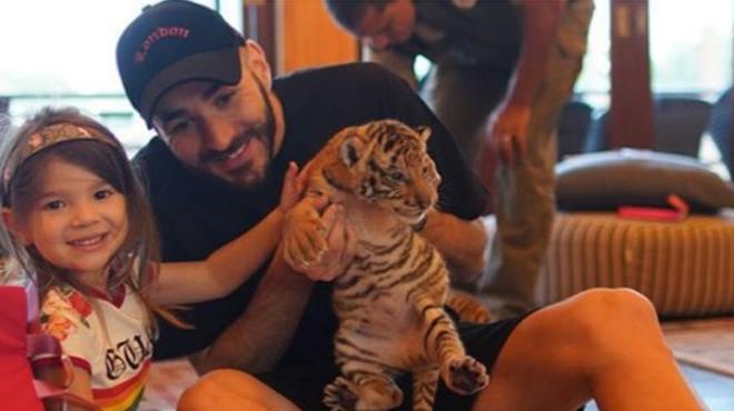 Karim Benzema pose avec un bébé tigre, la photo indigne les internautes: