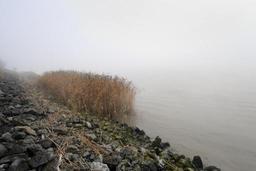Du brouillard jusque samedi avant un dimanche ensoleillé