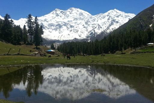 Pakistan: sauvetage épique d'une alpiniste française