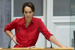 Flandre: Groen veut étendre les bois plutôt que compenser le déboisement