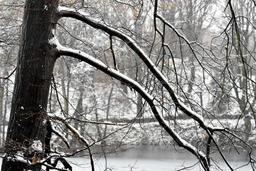 Pluie et retour de conditions hivernales