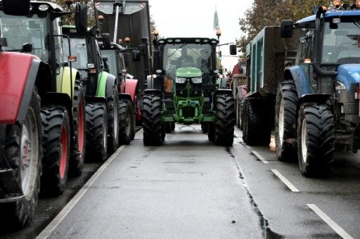 Brest: une centaine d'agriculteurs s'en prend à des grandes surfaces