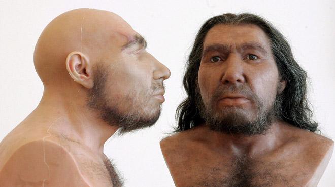 AVANT C'ÉTAIT MIEUX? Des dents d'hommes de Néandertal digérées par de grands carnivores