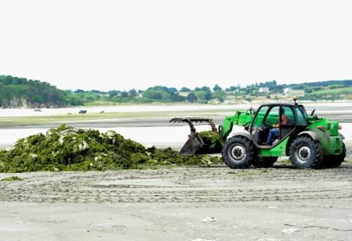 Algues vertes: l'Etat condamné à verser plus de 500.000 euros à Saint-Brieuc