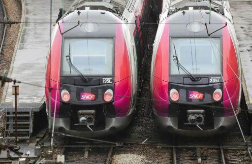 Les petites lignes de train, un luxe pour le pays?