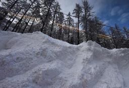 Suisse: une dizaine de randonneurs emportés par une avalanche