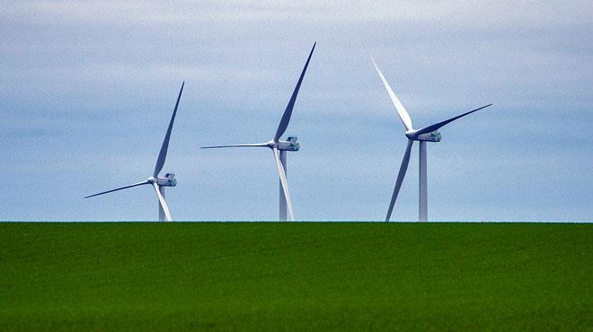 Un permis pour un champ d'éoliennes à Éghezée a été annulé pour protéger la bio-diversité