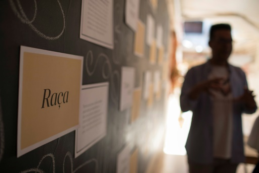 Au Brésil, guide de survie pour les Noirs face aux forces de l'ordre