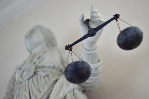 Meuse: deux hommes jugés pour avoir tenté de noyer une octogénaire après l'avoir volée