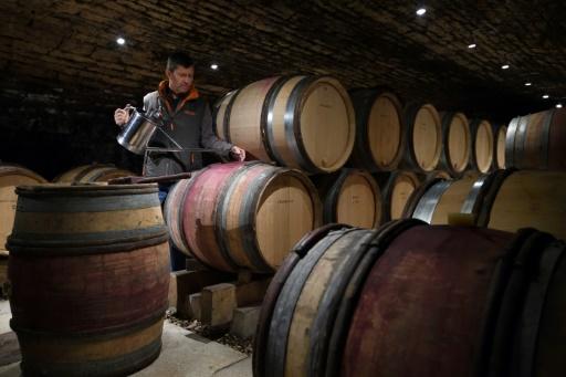 La Chine va tirer la consommation mondiale de vin (étude)