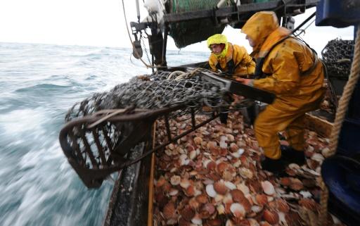 Pêche: au moins 55% des  océans exploitée par les grands chalutiers