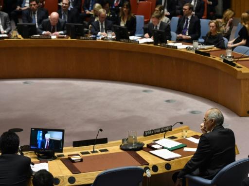 Syrie: le Conseil de sécurité de l'ONU votera vendredi 16H00 GMT sur un cessez-le-feu