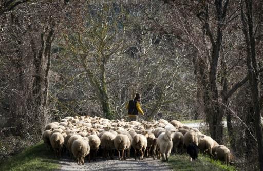 Ce qui fâche le monde rural