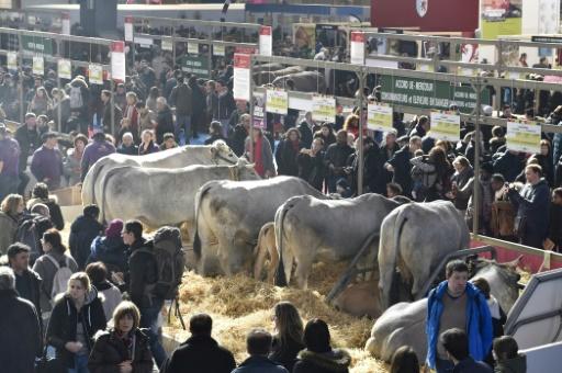 Les coopératives agricoles ont-elles pris un tournant trop capitaliste ?