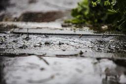 Léger réchauffement des températures ce week-end, marqué par la pluie