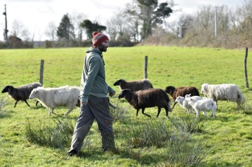 Notre-Dame-des-Landes: un futur projet agricole encore incertain