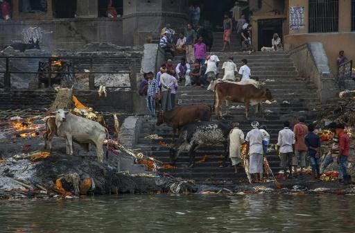 En Inde, Varanasi, ville sacrée et vitrine des nationalistes hindous