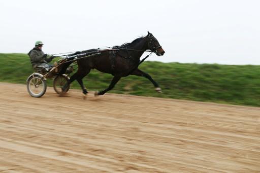 Bold Eagle remporte le Critérium de vitesse de Cagnes-sur-mer