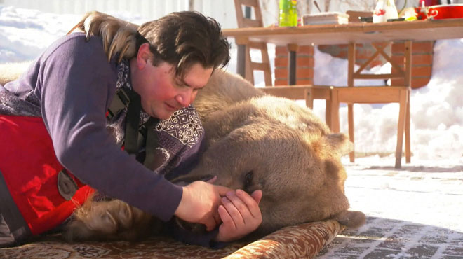 Impressionnant: leur animal de compagnie est un ours brun de 300 kilos