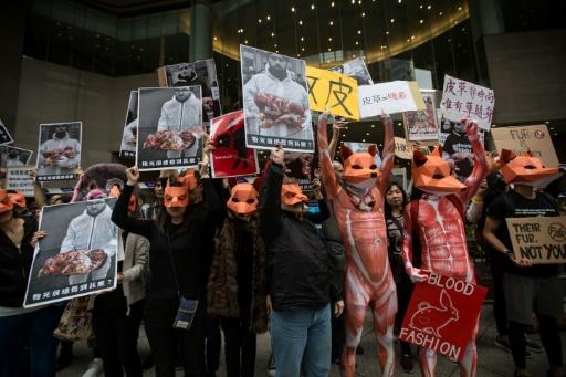 Versace et Furla bannissent la fourrure animale