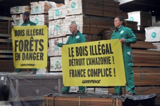 Amazonie: l'exportation de bois exotique alimente trafics et déforestation, dénonce Greenpeace