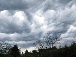 Un jeudi sous la grisaille, avec de la pluie surtout en matinée