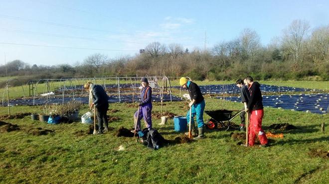 Simon et ses amis installent une ferme agro-écologique à Rochefort: victimes de vandalisme, ils soupçonnent le