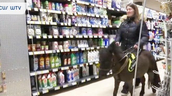 Monique, une Belge malvoyante, utilise un cheval nain comme guide