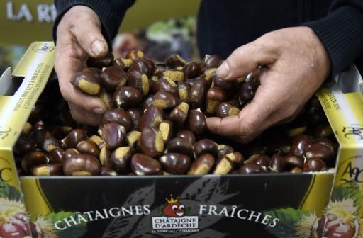 Les producteurs de châtaignes d'Ardèche vont être indemnisés après la sécheresse