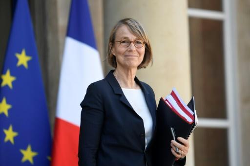 Françoise Nyssen contestée pour son action et son plan contre les déserts culturels