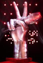 Valentine Brognion remporte la 7e saison de The Voice Belgique