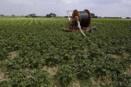 Lancement de l'association Agriwa2040.eu, qui vient en aide aux agriculteurs