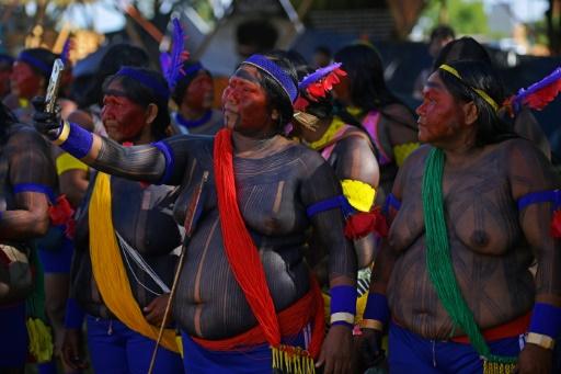 Des indigènes manifestent à Brasilia pour défendre leurs terres