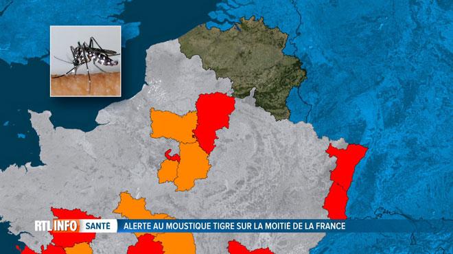 Alerte au moustique tigre dans de nombreux départements français, dont certains proches de la Belgique: quel risque chez nous?