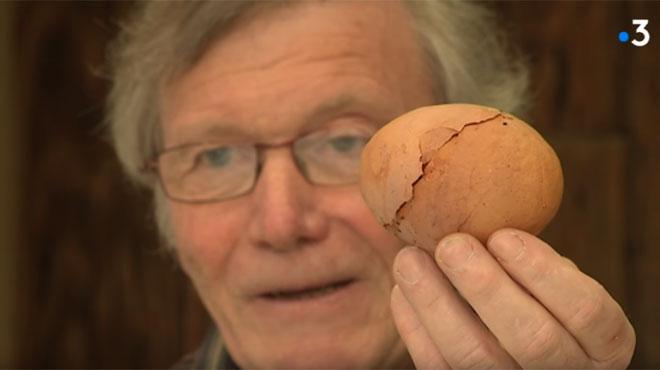 Patrick trouve un œuf GIGANTESQUE dans son poulailler: ce qu'il découvre à l'intérieur est surprenant (vidéo)