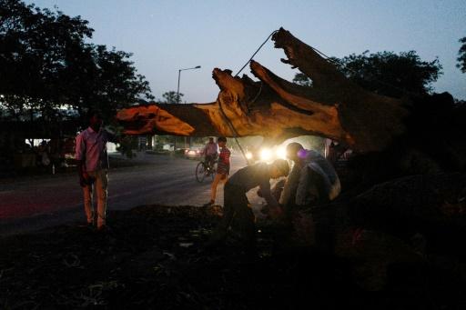 Inde: le bilan des tempêtes s'établit autour de 150 morts